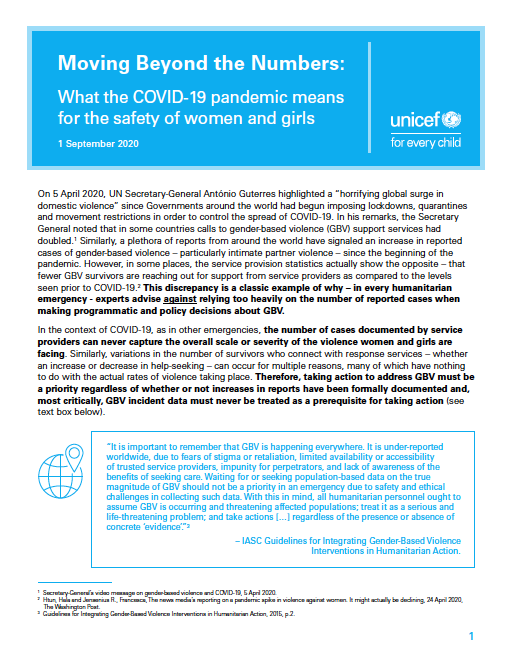 Moving Beyond the Numbers- What the COVID-19 pandemic means for the safety of women and girls