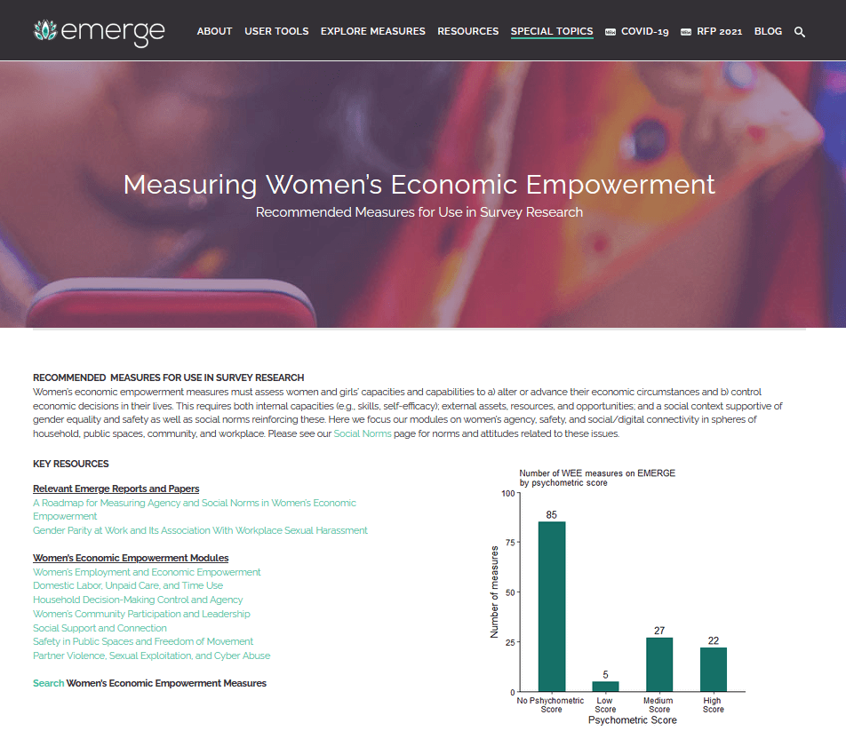 Measuring women's economic empowerment: Recommended measures for survey research